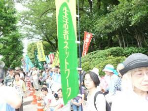 国会を包囲する参加者。生活者ネットワークメンバーも参加した
